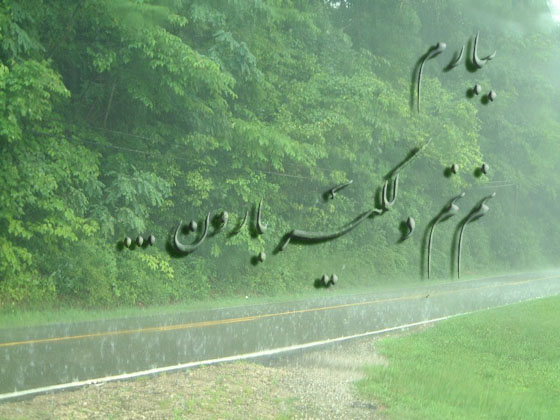 rainView.jpg